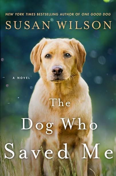 susan wilson new england writer the dog who danced one good dog